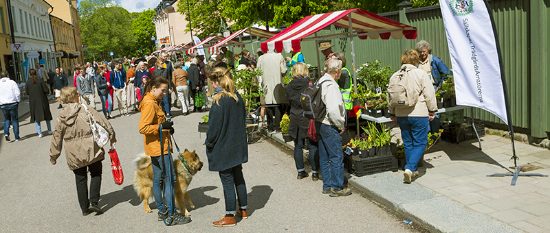 Trädgårdsmarknad