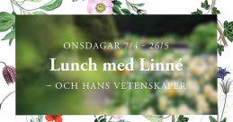 Suddi bild på växter som ligger ovanpå en platta med botaniska illustrationer från Lindmans flora. Text: onsdagar 7/4-26/5, Lunch med Linné – och hans vetenskaper
